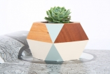 Faceted Succulent Pots by GH Design